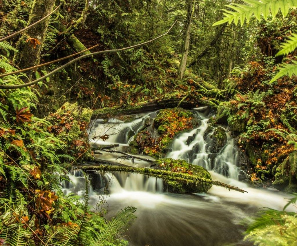 waterfall vancouver island canada victoria british columbia long exposure vancouver island photography tour