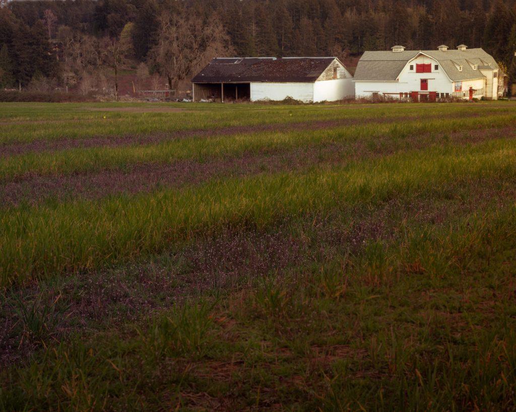 Woodwyn farm House Vancouver island