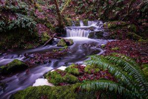 waterfalls vancouver island photography blog