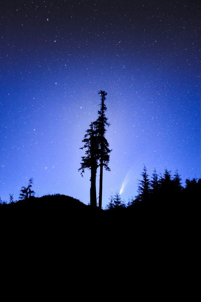 Comet Neowise Port Renfrew