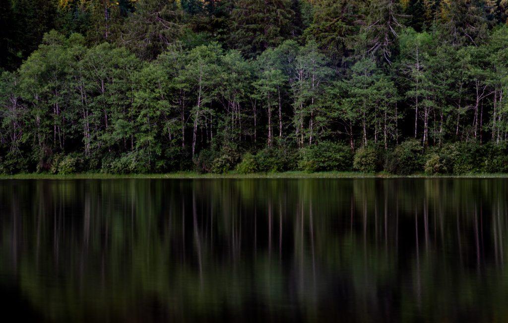 tahsis bc vancouver island malaspina lake