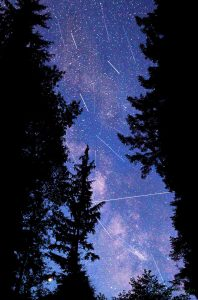 Port Renfrew Milky Way Astrophotography and Perseids Vancouver Island Photography