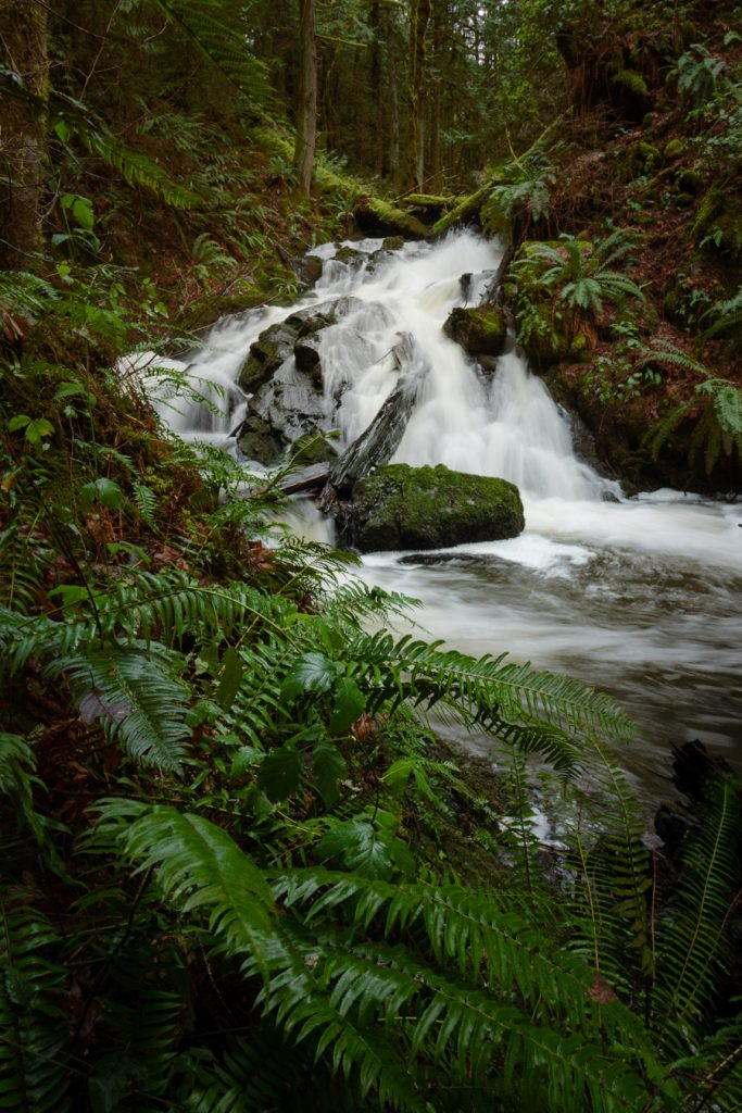 vancouver island photography blog waterfalls